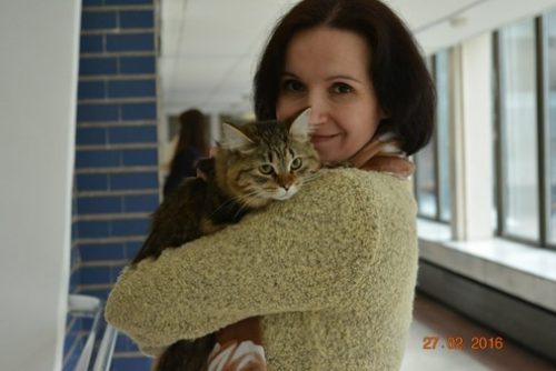 "Cattery of Siberian cats ""Lesnaya Skazka"""